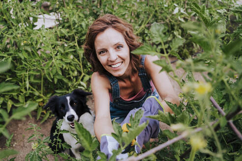 Smiling woman with border collie working in vegetable garden - EBBF00412