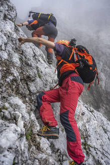 Mature males climbing on rocky mountain during foggy weather, Bergamasque Alps, Italy - MCVF00538