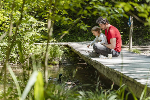 Father and daughter feeding ducks swimming on stream while sitting over boardwalk in forest - DIGF12759
