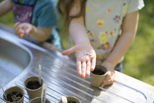 Girl's hand holding seeds while gardening with sister at table in garden - BRF01473