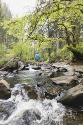 Senior man standing on rock in middle of Rur river flowing through High Fens - Eifel Nature Park in spring - GWF06666