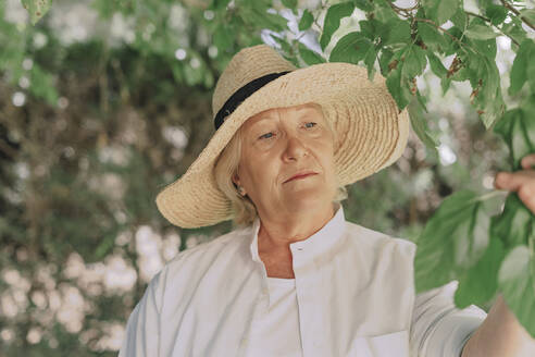 Close-up of senior woman wearing hat looking at plant in yard - ERRF04116