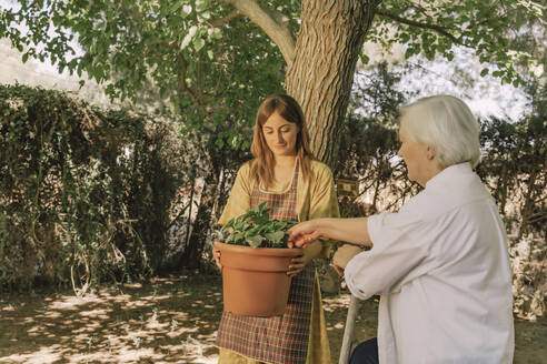 Mother examining potted plant held by daughter in yard - ERRF04149