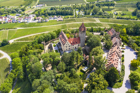 Germany, Baden-Wurttemberg, Brackenheim, Helicopter view of Schloss Stocksberg and surrounding village in summer - AMF08330