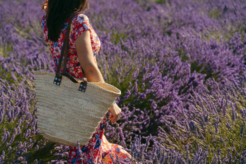 Mid section of woman standing in vast lavender field - GEMF03979