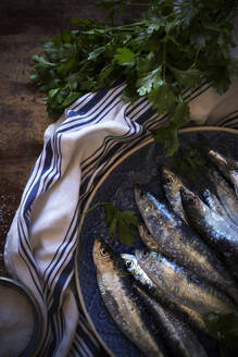 Salty anchovies with parsley - ADSF09975