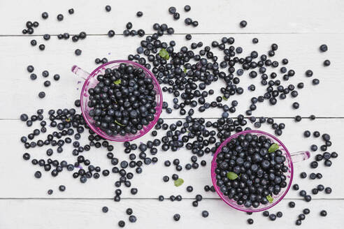 Two bowls of fresh wild blueberries - GWF06697