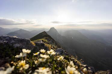 Hiker on viewpoint, Brentenjoch, Bavaria, Germany - MALF00085