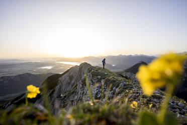 Hiker on viewpoint during sunrise, Brentenjoch, Bavaria, Germany - MALF00088