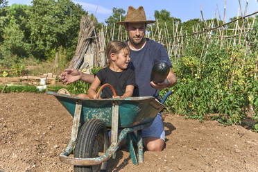Father showing a zucchini to his daughter sitting in wheelbarrow - VEGF02687