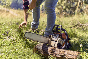 Lumberjack picking grass while standing by chainsaw in forest - VEGF02766