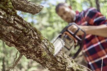 Woodsman cutting tree branch with chainsaw in forest - VEGF02775