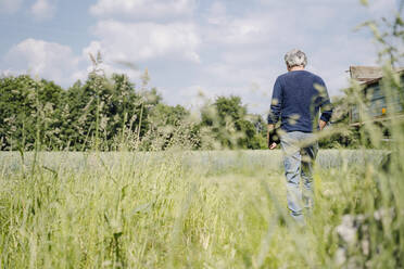 Man with laptop walking on grass in agricultural field - GUSF04404