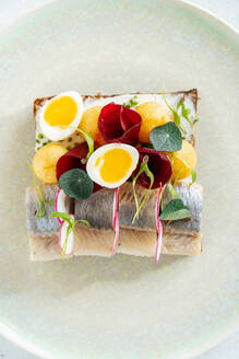 Overhead yummy fish sandwich with fresh vegetables and boiled quail eggs placed on plate in cafe - ADSF11777