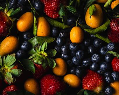 Full frame of blueberries, strawberries and kumquats - FLMF00277