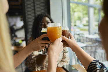 Female friends clinking craft beer glasses in a pub - ZEDF03633