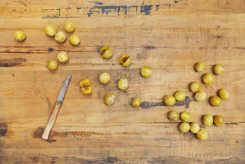 Freshly harvested mirabelle plums (Prunus domestica) - GWF06743