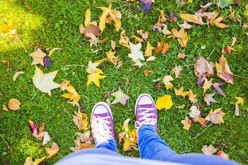 Feet of woman standing amidst autumn leaves on grass at park - FLMF00280