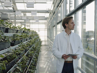 Scientist holding tablet in a greenhouse looking out of window - JOSEF01600