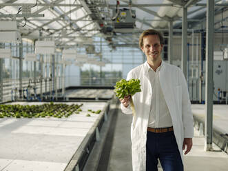 Portrait of a smiling scientist holding lettuce in a greenhouse - JOSEF01609