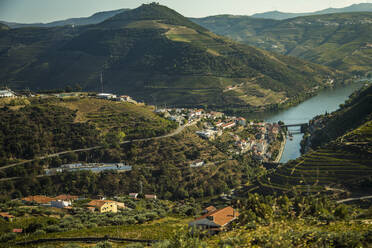 Portugal, Porto District, Porto, Countryside village in summer with terraced hills and Douro river in background - NGF00646