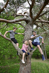 Children and father smiling while sitting on branch of tree in forest - ECPF01023