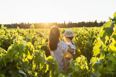 Mother holding her daughter in a vineyard at sunset in Provence, France - GEMF04115