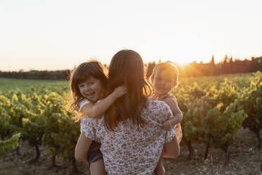 Mother and little daughters in a vineyard at sunset in Provence, France - GEMF04124