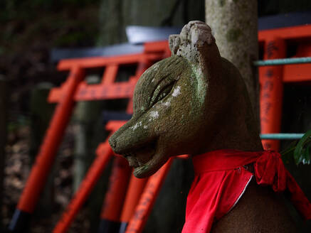 Shabby sculpture of fox spirit located outside traditional Shinto temple in Japan - ADSF14374