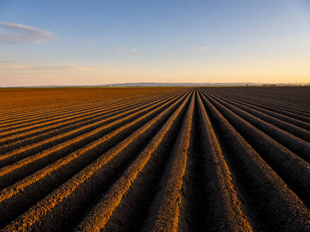 Ploughed field at sunset - NOF00131