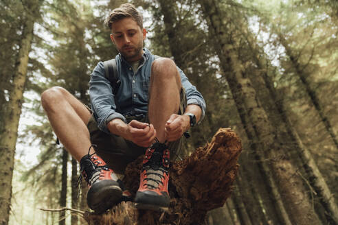 Mid adult man tying shoelace while sitting on wood against trees in forest - BOYF01542