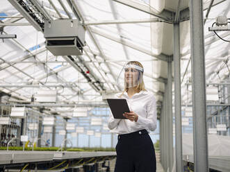 Businesswoman wearing face shield with digital tablet working in greenhouse - JOSEF01662