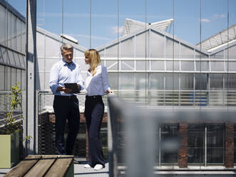 Colleagues discussing over digital tablet while standing against window in greenhouse - JOSEF01671