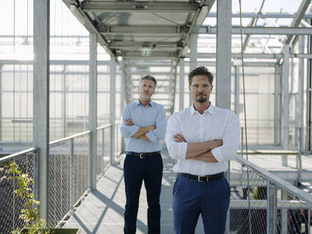 Confident male coworkers with arms crossed standing on footbridge in greenhouse - JOSEF01695
