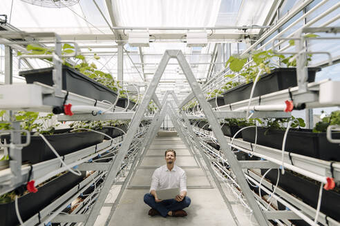 Businessman using laptop while sitting amidst plants in greenhouse - JOSEF01731