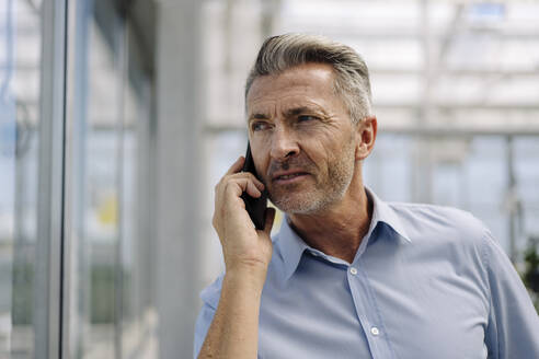 Close-up of male professional talking over smart phone in greenhouse - JOSEF01803