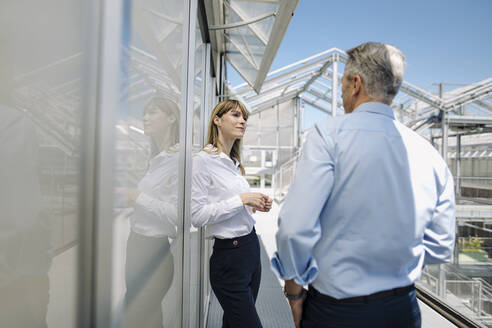 Business professionals discussing while standing by wall at greenhouse - JOSEF01809