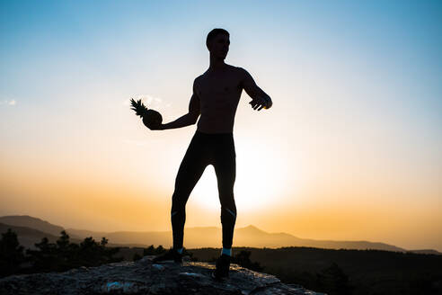 Silhouette of man holding pineapple while standing on rock - MIMFF00188