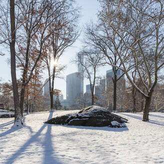 USA, New York, New York City, Bare trees and rock covered with snow in Central Park - AHF00064