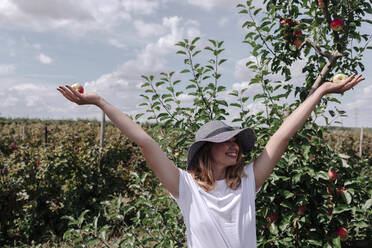 Carefree woman wearing hat with arms raised holding apples while standing in orchard - OGF00582