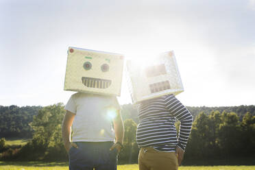 Brothers with cardboard box on face standing in meadow - VABF03516