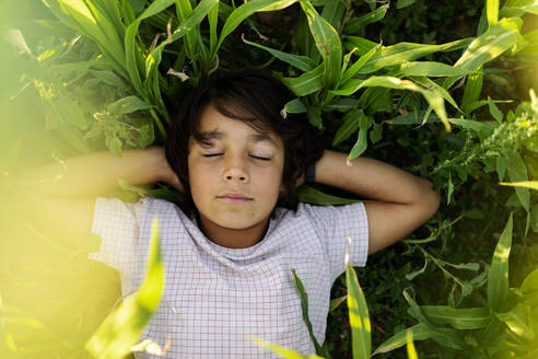 Boy with hands behind back sleeping on grass in meadow - VABF03549