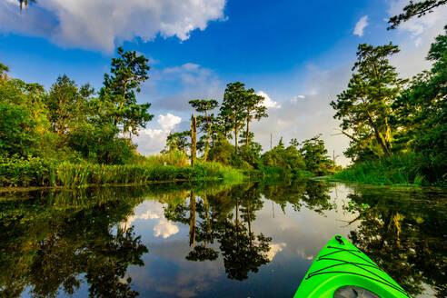 Kayaking through Cane Bayou, New Orleans, Louisiana, United States of America, North America - RHPLF17707