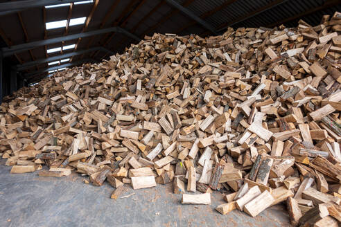 Large heap of firewood - NDF01143