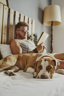 A young blond boy reading in bed with his dog - CAVF89417