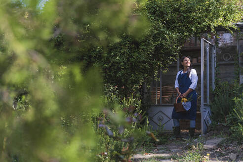 Mature woman holding basket looking away while standing in back yard - FMOF01127