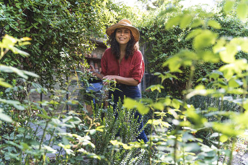 Mature woman wearing hat watering trees standing in back yard on sunny day - FMOF01136