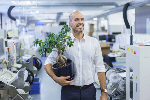 Smiling businessman holding potted plant while looking away at factory - MOEF03385
