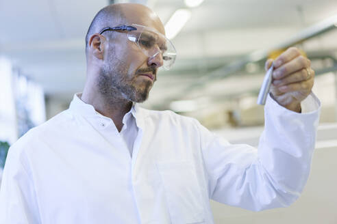 Mature male technician wearing protective eyewear looking at sample in factory - MOEF03397