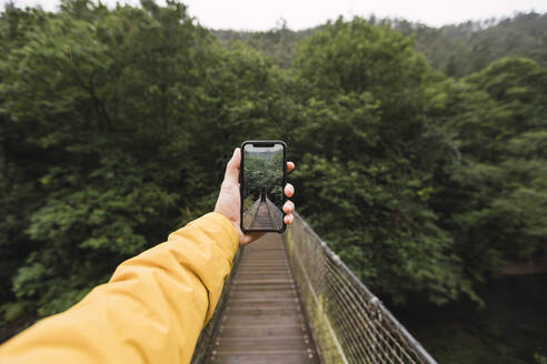 Hand of man holding smart phone while photographing footbridge against trees, Fragas do Eume, Galicia, Spain - RSGF00304